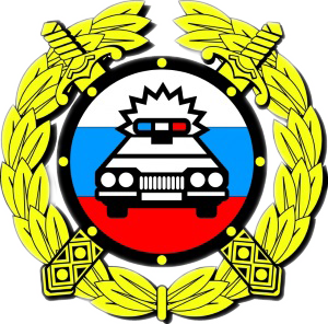 ОГИБДД МО МВД России Каменск-Уральский(Код:1165025)